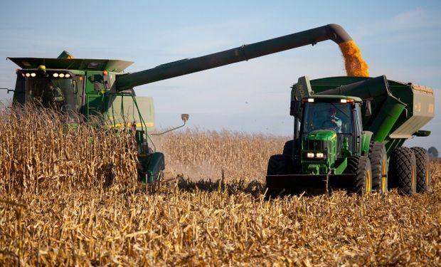 Rechazo del campo a las limitaciones para la exportación de maíz