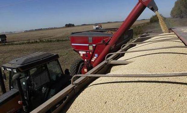 Comparado con 2012, los productores apenas vendieron un tercio de la soja nueva