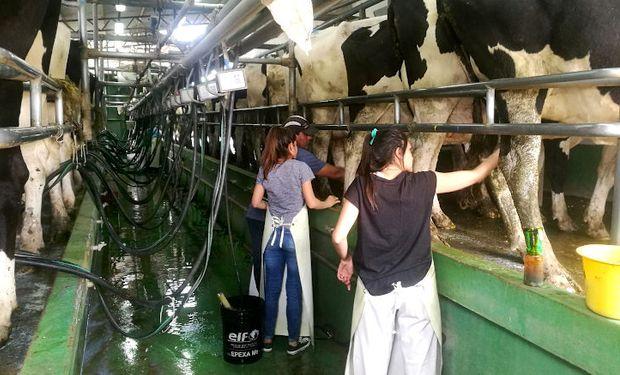 El precio promedio de la leche creció un 8 % en abril
