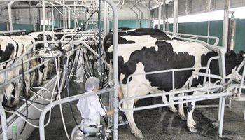 China frenó el ingreso de productos lácteos