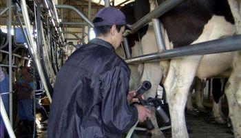 Gobierno mexicano otorgará créditos a productores lecheros