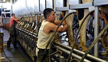 Uruguay: poder de compra de la leche cayó 28% a setiembre