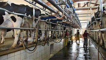 Argentina se posicionó en el top tres de países que más aumentaron su producción de leche