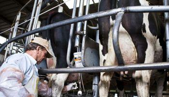 Situaciones contrastantes en el sector lechero argentino