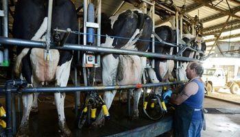 Los datos que pueden mejorar a la lechería