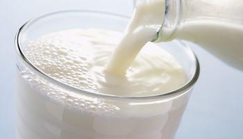 Ciencia y probióticos: las claves que pueden marcar el futuro de la lechería