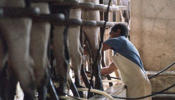 Principio de acuerdo en el conflicto lácteo