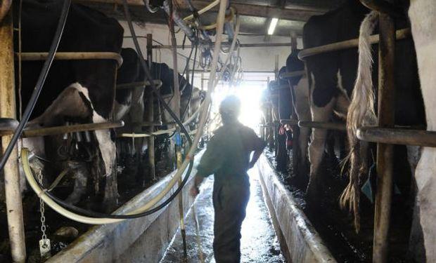 Los problemas siguen. Importante empresa de Esperanza le comunicó a los tamberos que desde el primer día de setiembre no retirará leche.