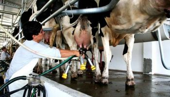 En Uruguay, la lechería sufre una de las peores crisis de su historia