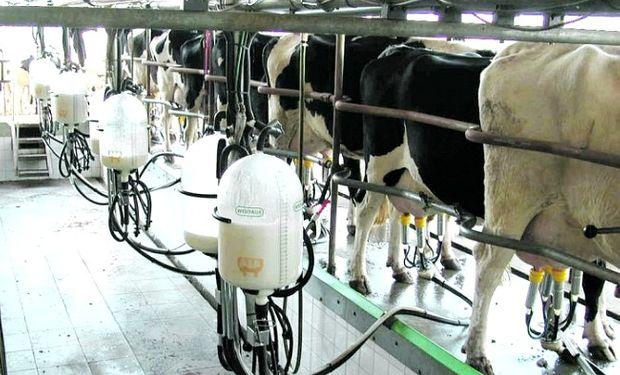 Los industriales del sector estiman que la producción de leche del corriente año será 1% menor a la del año pasado