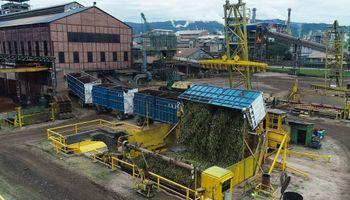 Azúcar: las exportaciones de Ledesma crecieron un 126 %