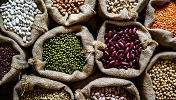 Herramientas para garantizar la calidad de las legumbres para el mercado internacional