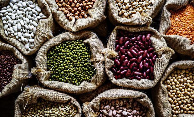 Productores y exportadores de legumbres optan por herramientas que aseguren el mayor control de procesos y trazabilidad.