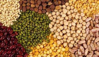 Un paso adelante para legumbres de invierno