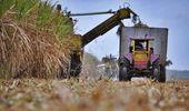 El Consejo Económico y Social de Salta reclamó por la prórroga de la Ley de Biocombustibles