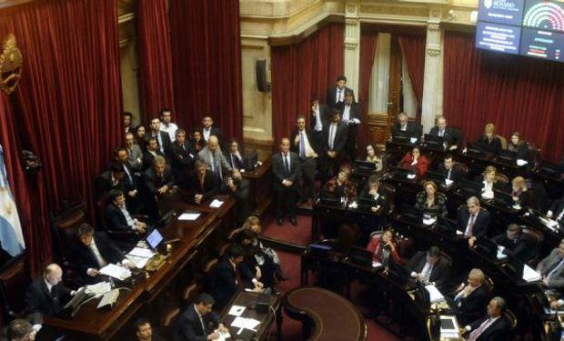LEY DE ABASTECIMIENTO. El Senado aprobó la iniciativa y la giró a Diputados (DyN).