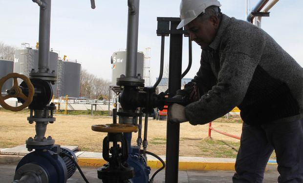 Ley de Biocombustibles: advierten que el proyecto kirchnerista va a contramano de las tendencias ambientales mundiales