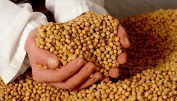 Ley de semillas: buscan el apoyo del Frente Renovador