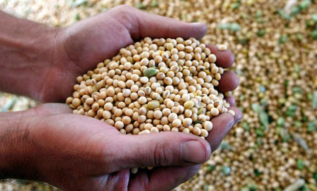 Comunicado de la Bolsa de Cereales de Buenos Aires.