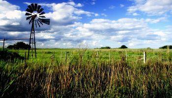 Inmobiliarias rurales expectantes tras el decreto de Macri