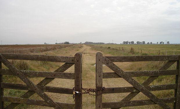 Modificación de la ley de tierras.