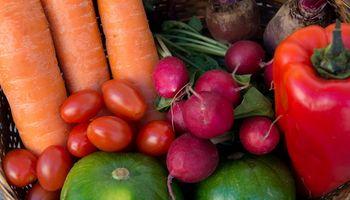 Se aprobó la Ley Donal que fomenta la donación de alimentos