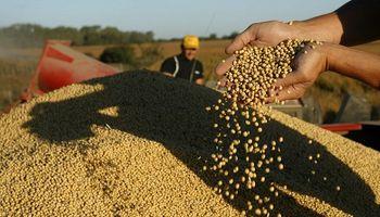 """Para la industria semillera, cambiar la ley de semillas """"no debería ser un imposible"""""""