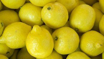 Limones: científicos desarrollan un sistema para detectar temprano una enfermedad letal