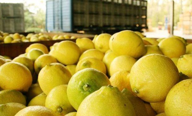 """""""Hay que esperar"""" dijo el presidente de la Asociación Tucumana del Citrus."""