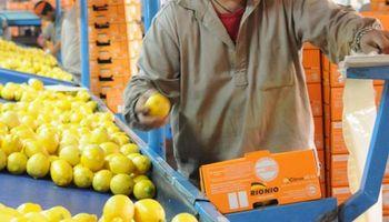 """El sector limonero generaliza el uso del sello """"Alimentos Argentinos"""""""