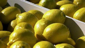 """Estados Unidos considerará """"seriamente"""" el reingreso de limones argentinos"""