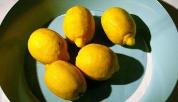 Exportadores de cítricos advierten con ir a Plaza de Mayo a regalar fruta