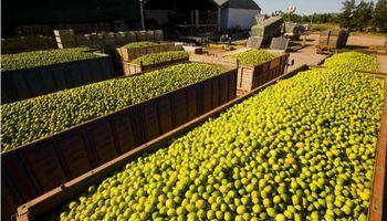 EE.UU., más cerca de permitir limones argentinos