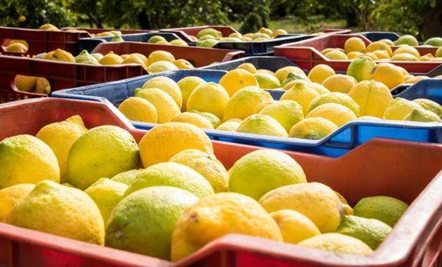 La decisión fue comunicada oficialmente por el Departamento de Agricultura de ese país.