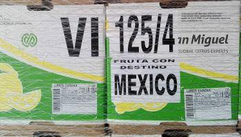 Salió el primer embarque de la historia con limones de Tucumán a México