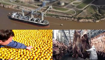 Negociaciones contrarreloj en EE.UU. por limones, biodiesel y carne