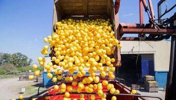 Argentina exportó el primer cargamento de limones a Brasil