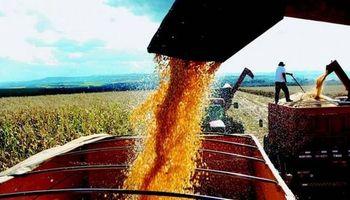 Agroexportadores liquidaron más de U$S 10.720 millones