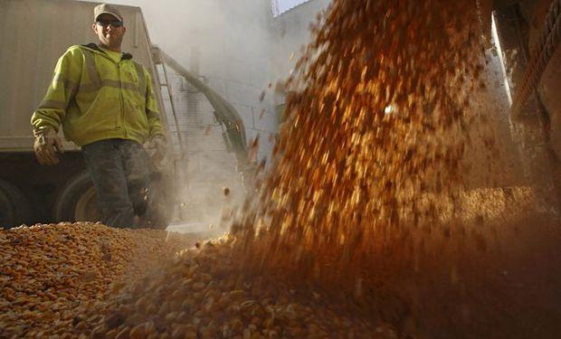 La liquidación de divisas está fundamentalmente relacionada con la compra de granos que luego serán exportados ya sea en su mismo estado o como productos procesados.