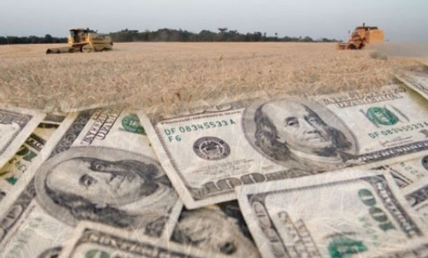 Volvió a aumentar el ingreso de divisas del agro.