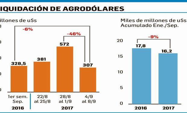Liquidación de divisas del sector agropecuario alcanzó durante la semana pasada u$s307 millones. Datos: Ciara-Cec