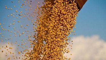 El agro liquidó US$ 16.772 millones en lo que va del año