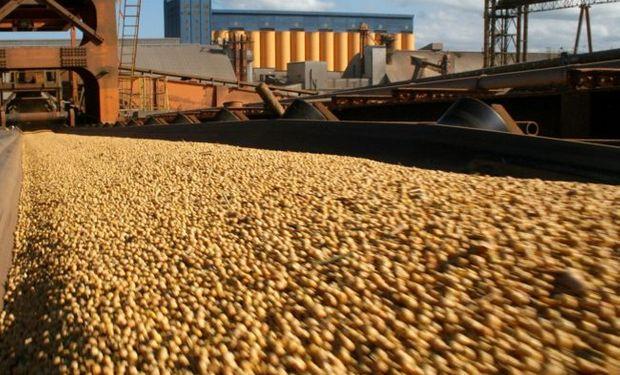 Liquidación de los agroexportadores.