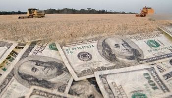 US$ 100 millones más para la liquidación de divisas