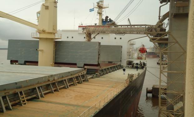 Fue la semana completa con menor liquidación de exportaciones del sector desde la del 16 al 20 de marzo pasado.