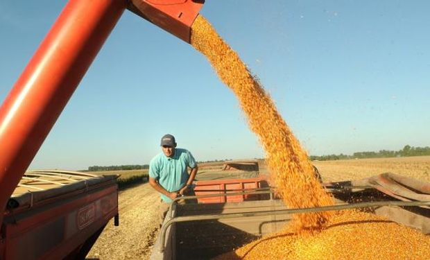 Mínimos para el ingreso de dólares por la exportación de granos y subproductos.