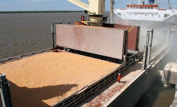 Liquidación de divisas de la exportación de granos cayó 30%