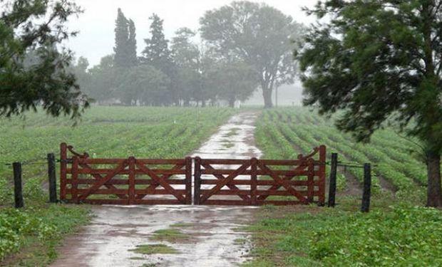 Lluvias a gran escala: día por día, qué dice el pronóstico del tiempo