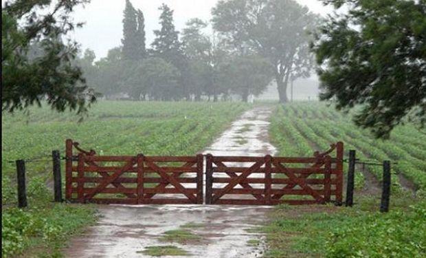 Se esperan lluvias débiles para zona núcleo