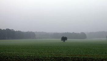 Alerta por tormentas en la franja este del país